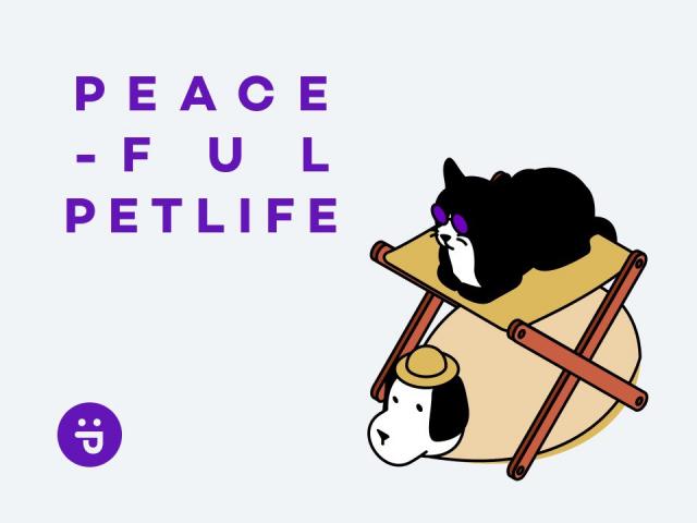 덜 고단한, 더 평화로운 개, 고양이 생활을 미션으로 온라인 펫샵을 운영하는 퍼플네스트